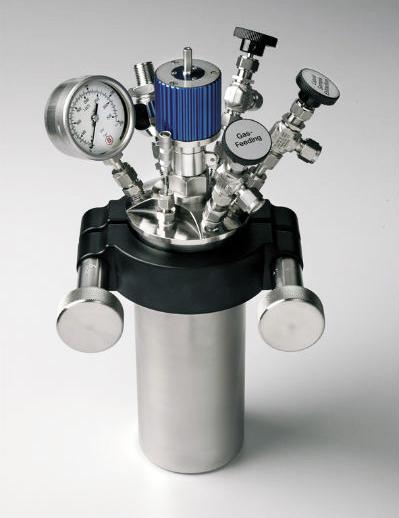 BR300 Reactor