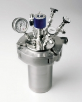 BR1000 high Pressure Reactor